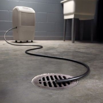 How to Deal with the Basement Humidity Picture