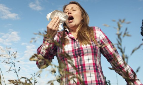 How to Keep Allergens Away from Your Home Picture